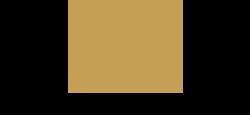 bar maor g